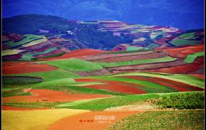 【昆明图片】上帝遗落的调色板—驾行云南东川红土地