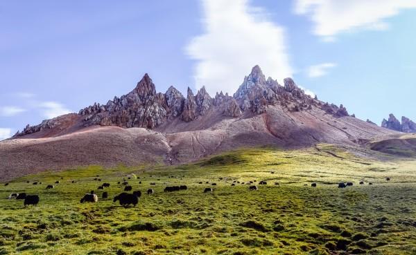 天,神山看遍,史上首次藏区八大神山徒步转山图片