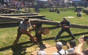【西雅图图片】2017年 西雅圖觀伐木工技能大賽