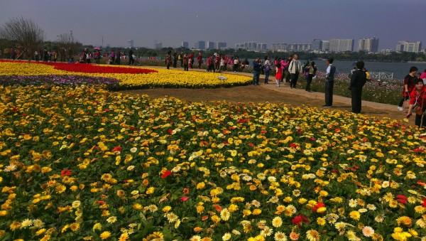 广州 游记   海珠湖公园位于广州市海珠区城市新中轴的南段,公园面积