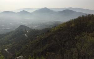 【北京图片】山野寻花之春风拂面