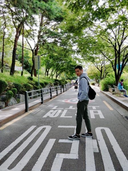 梨花洞壁画村   地 址:yulgok-ro 19-gil, jongno-gu, seoul,   韩国   (公园下来右边走走走就到了)   到达方式:地铁4号线至惠化站()下车,经由2号出口出站后直行,在第一个路口有指示牌,沿着骆山公园方向走,到公园图片