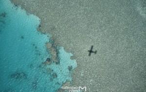 【圣灵群岛图片】❤十天度四季:两个人南半球的九天 - 悉尼*猎人谷*心形礁大堡礁圣灵群岛*汉密尔顿岛艾尔利滩❤