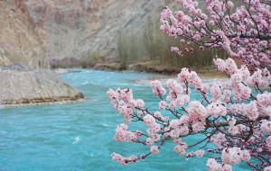 【喀什图片】新疆,你要来!(南疆喀什-南疆塔县-北疆伊宁  15日)