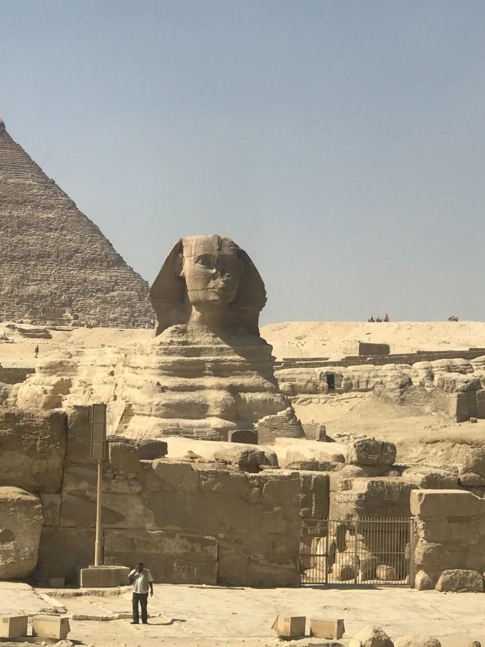 埃及四大动物守护神