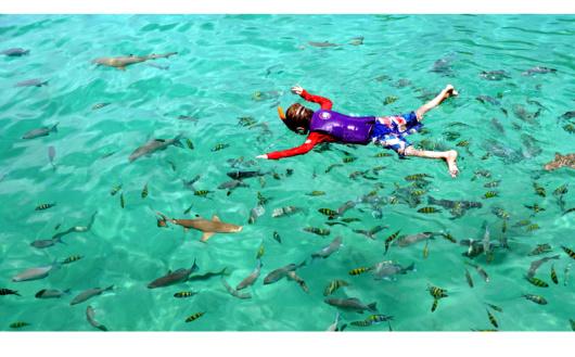 兰卡威曾在郑和过境的时候留下记载,史称琅琊交宜。这里虽然只是个小岛,它的知名度却使它所在的吉打州黯然失色。 兰卡威为马六甲海峡和安达曼海温暖的海水所环绕,这里有99个岛屿,兰卡威岛是这里面积最大也是唯一有人定居的岛,这里白皙的海滩和茂密的丛林,平静而无风暴之扰的水域为本已美丽的海滩增添了魅力。清澈碧绿的海水和绵长平缓的沙滩构成了天堂般的海滨度假圣地,而葱郁繁茂的森林与神秘而壮观的岩洞又独具魅力的探险地。 兰卡威也是著名的购物天堂,这里是个自由港,在岛上居住超过72小时的旅游者,就能够享受岛上的购物和住宿的