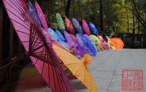 【常德图片】2012年3月25日桃花源之行——专程拍摄桃花