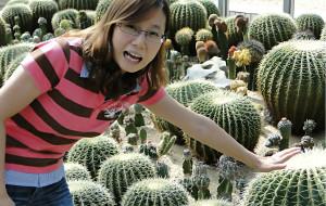 【深圳图片】绿野仙踪---深圳仙湖植物园
