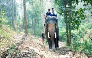 【泰国图片】#蜂首游记#[BY阿骨大叔]《漫游暹罗--2人10天3万游5地照片600张》
