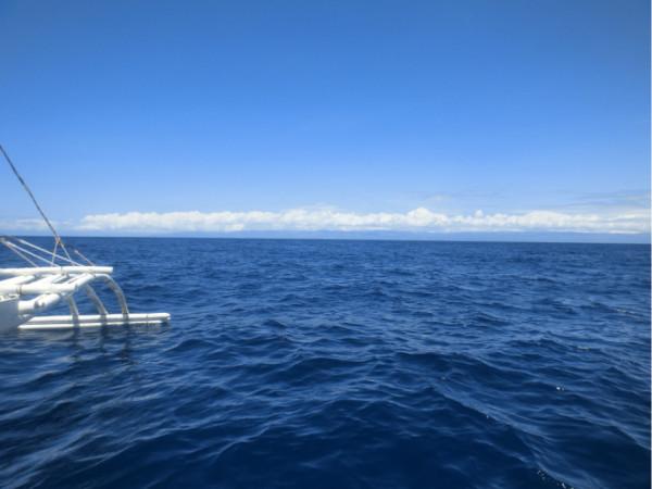 菲律宾 宿务 薄荷岛 潜水 环岛旅行