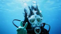 苏梅岛娱乐-Ban's Diving Resort