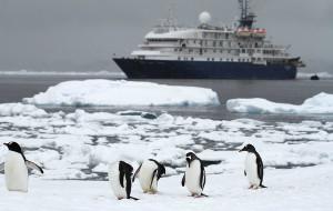 【南极洲图片】一路向南!10天跨越南极半岛——极地•领队日记