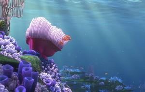 北海娱乐-涠洲岛潜水