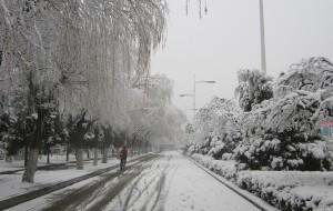 【营口图片】镜湖公园赏春雪