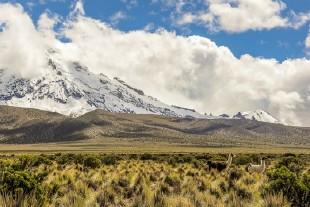 南美洲旅游