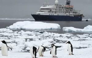 南极半岛图片