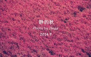 【绥中图片】《你也看到那一抹红了吗?》--秋的耍 盘锦-锦州-兴城-绥中 各种村镇的探秘之旅