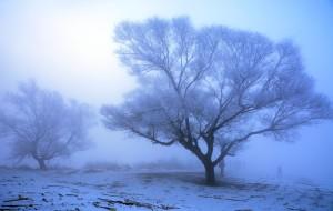 【吉林市图片】那年冬天  我在东北               哈尔滨 漠河 雪谷 雾凇岛 9日游
