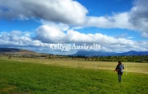 【塔斯马尼亚图片】澳大利亚 墨尔本 凯恩斯 塔斯马尼亚 15天自驾游