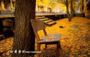 【南雄图片】南雄,寻找岭南秋天的童话