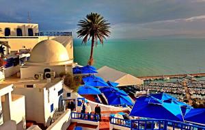 【突尼斯图片】蓝与白,不一样的突尼斯小镇
