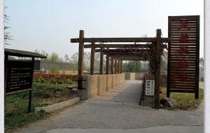 【安阳图片】行走安阳——殷墟博物苑