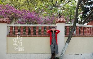 【中国图片】【蜂首纪念】花里行间--青岛足记