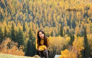 【喀纳斯图片】十月金秋,我的落叶情怀