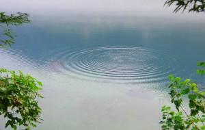 【郴州图片】2015年图记----周末出行之雾锁东江