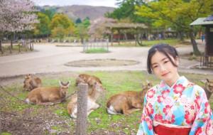 【本州图片】❤宝藏纪念❤【小绿足迹】说好的日本 关西七日の桜(京都、奈良、大阪  多图)