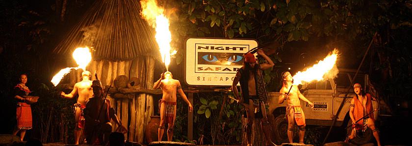 新加坡夜间动物园含英文游园车门票(可选自助餐 中文解说车)
