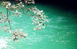 【花溪图片】【西部系列】多彩贵州,兜兜转转一路黔行。