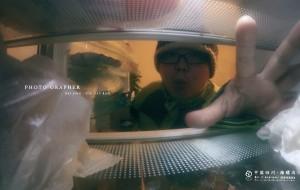 【泸定图片】海螺沟记录爪印的喵星人    待续