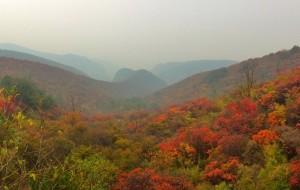 【焦作图片】秋色无际青天河