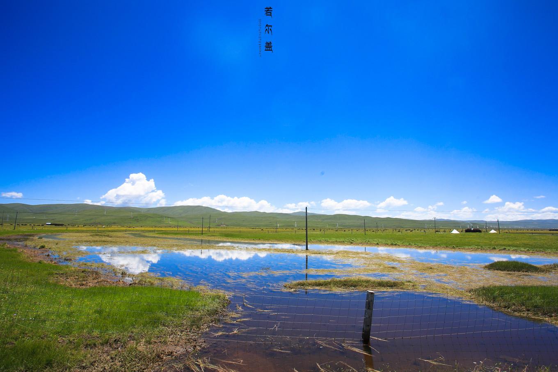 【7月,若尔盖】最美的不是风景,而是一路上有你们