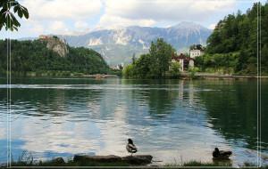 【卢布尔雅那图片】斯洛文尼亚的魅力
