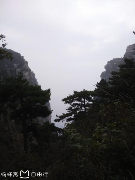 庐山的云雾_庐山云雾的四种姿态
