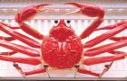 日本 蟹道乐 蟹宴料理餐厅 (大阪地区订座预约)