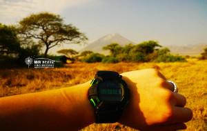 【坦桑尼亚图片】没戴口罩的日子~我们在坦桑尼亚~生生不息的稀树草原和动物大迁徙~7月非洲【猪的飞行日记】
