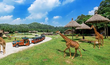 隆野生动物园门票