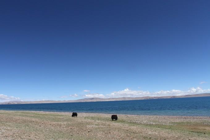 有曲径通幽有波澜壮阔有海天一线有湖光岛影有碧海蓝天有渔舟唱