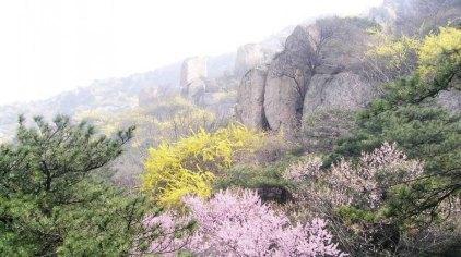 泰安徂徕山国家森林公园门票