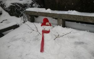 【屯溪图片】2015年12.4~12.5黄山··第一次见到雪耶