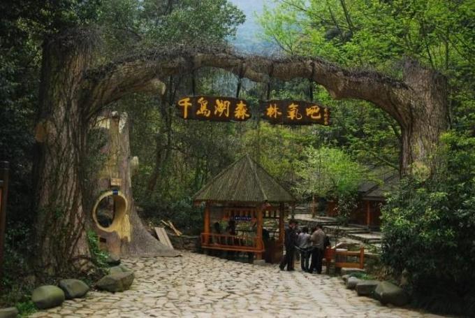 千岛湖石林,森林氧吧