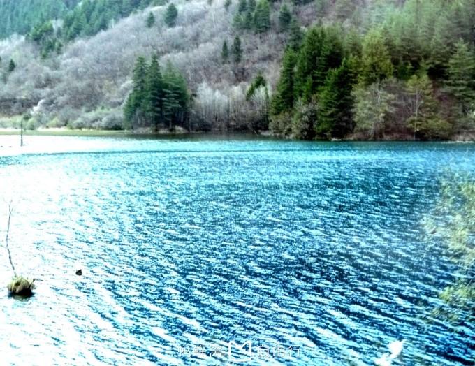 春季风景简笔画大彩色全