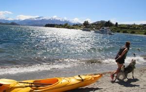 【凯库拉图片】特种兵炼成记——飞天遁海在新西兰