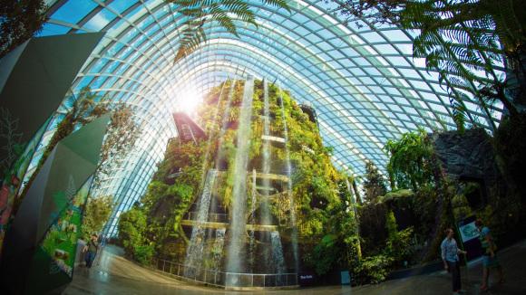 还有金园,银园和巨树丛林内的18棵擎天大树,文化遗产花园,植物世界,蜻