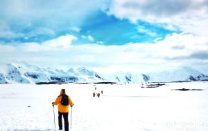 【南极洲图片】【在世界的最南端】拥有*愛——{南极篇}
