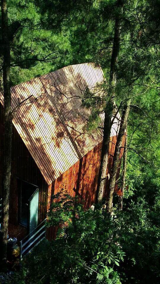 美岕山野温泉度假村,真正的原生态【树屋】原来在这!