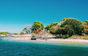 【珀斯图片】带着爸妈游西澳~(2016春节Perth珀斯向南篇)